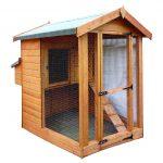 chicken shed