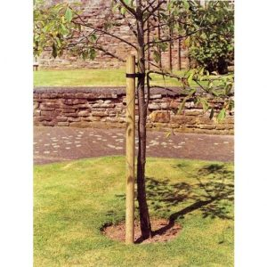 dia Tree Pole