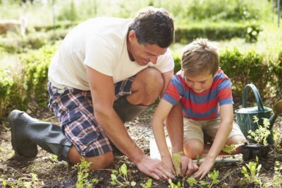 Getting Children Involved in Gardening